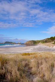 498 best beaches northland nz and the coromandel images on