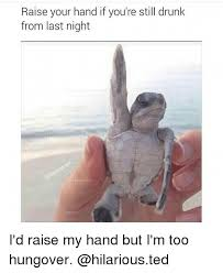 Funny Drunk Girl Memes - raise your hand if you re still drunk from last night i d raise my