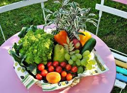 starting a vegetable garden everything you need to know to grow