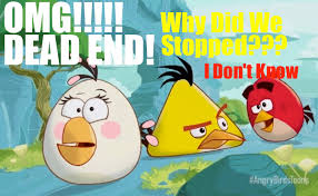 Angry Bird Meme - omg dead end meme from angry birds toons by superandrew418 on