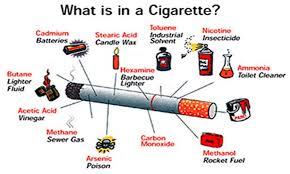 Argument essays on cigarette smoking   Term paper Service logo
