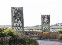 500 tiere tot u2013 zoo in england droht die schließung stern de