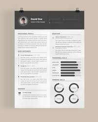 Best Resume Format Ever by 19 Best Professional Resume Templates Images On Pinterest Cover