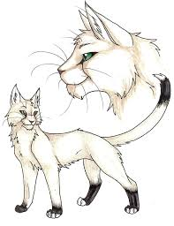 warrior cats coloring pages sad coloring pages warrior cat coloring pages cats sad warrior cat