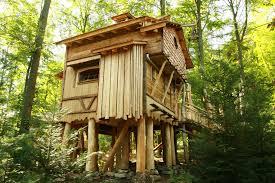 nice tree houses cesio us
