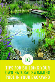 learn how to build your own all natural swimming pool