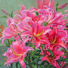 asiatic lilies hot pink asiatic lilies painting by fiona craig
