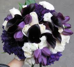 Purple Lily Flower Purple Stadium Flowers