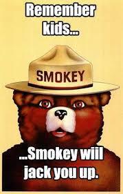 Smokey The Bear Meme Generator - image 764516 smokey the bear know your meme on smokey the