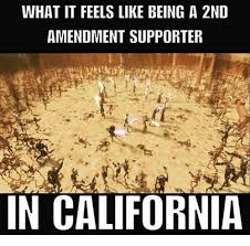 2nd Amendment Meme - what it feels like being a 2nd amendment supporter in california
