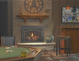 fireplace natural gas fireplace inserts amazing home design