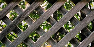 Heavy Duty Trellis Panels Guide To Fencing Hedges Walls Trellis Panels