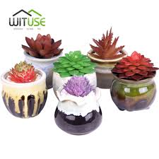 Cactus Planter by Online Get Cheap Cactus Garden Pot Aliexpress Com Alibaba Group