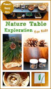 montessori tree printable montessori inspired botany tree exploration mama s happy hive