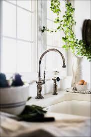 Kitchen Magnificent Bathroom Sink Stainless Steel Sink Dish by Kitchen Room Marvelous Kohler Bathroom Sinks Shaw Farm Sink Farm