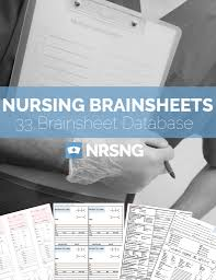 the ultimate nursing brain sheet database 33 nurse report sheet