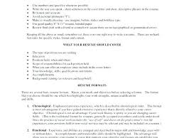 resume summary exles resume summary template resume summary sles for freshers