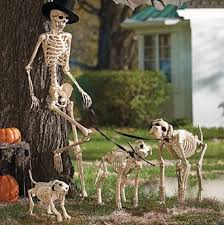 best 25 skeleton decorations ideas on