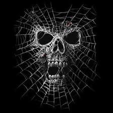 jewelry spider web skull s black t shirt