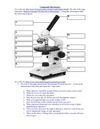 compound light microscope facts compound light microscope parts and functions worksheet www