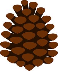 simple pine cone free clip art
