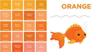 orange and color custom 25 shades of orange names design decoration of it s wine