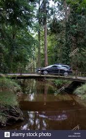 a car crosses a bridge a on rhinefield ornamental