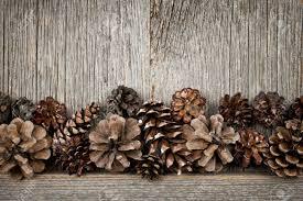 rustic natural wooden background with pine cones stock photo