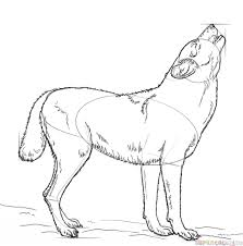 how to draw a howling wolf step by step drawing tutorials