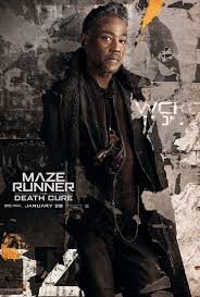 Maze Runner 3 Maze Runner The Cure