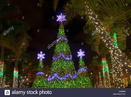 christmas tree and lighting and decorations at the village at