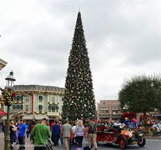 When Do Christmas Decorations Go Up At Disneyland The Magic Of Christmas At Disneyland The World Is A Book