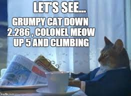 Colonel Meow Memes - colonel meow imgflip