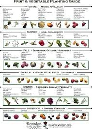 Companion Garden Layout Planting A Fall Vegetable Garden Plants Companion Planting