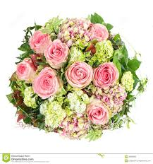 pink roses beautiful flowers bouquet stock photo image 38808965