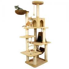 modern cat tree with hammock and nest