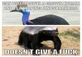 Meme Honey Badger - honey badger know your meme