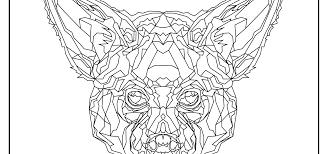 aardwolf coloring pages faunafocus