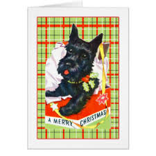 scottish terrier christmas cards invitations greeting u0026 photo