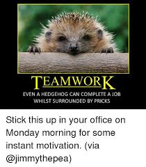 Teamwork Memes - in teamwork even a hedgehog can complete a job whilst surrounded