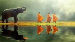 tranquility meditation sleep music for deep sleep rest and