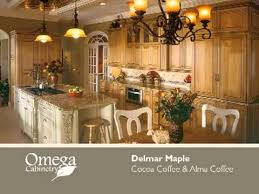 omega dynasty kitchen cabinets serving danbury ct by kitchen