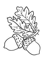 squirrel gift acorn coloring pages coloring sky