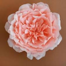 Wedding Backdrop Melbourne Fabienne Rose 2 Web Paper Flowers Pinterest Rose And Free Paper