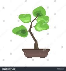 bonsai tree pot japanese growing stock vector 687002368