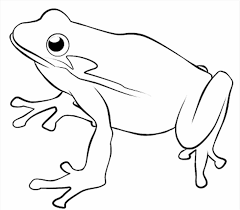 of frogs with crown to color and print coloring pages the princess