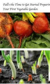 Fall Vegetable Garden Ideas by 112 Best Top 10 In Gardening Images On Pinterest Backyard Ideas
