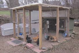 Chicken In Backyard Backyard Chicken Care Chicken Coops Kittycooks