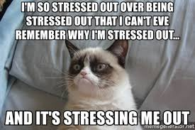Stressed Out Memes - i m so stressed out over being stressed out that i can t eve