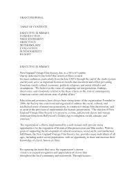 executive summary essay